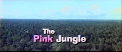 The Pink Jungle - 1968