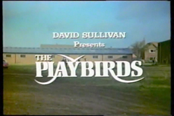 The Playbirds - 1978